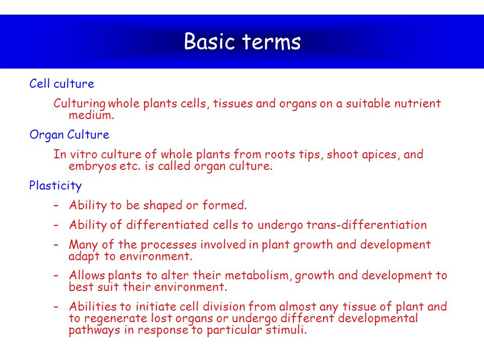 Basic terms Cell culture