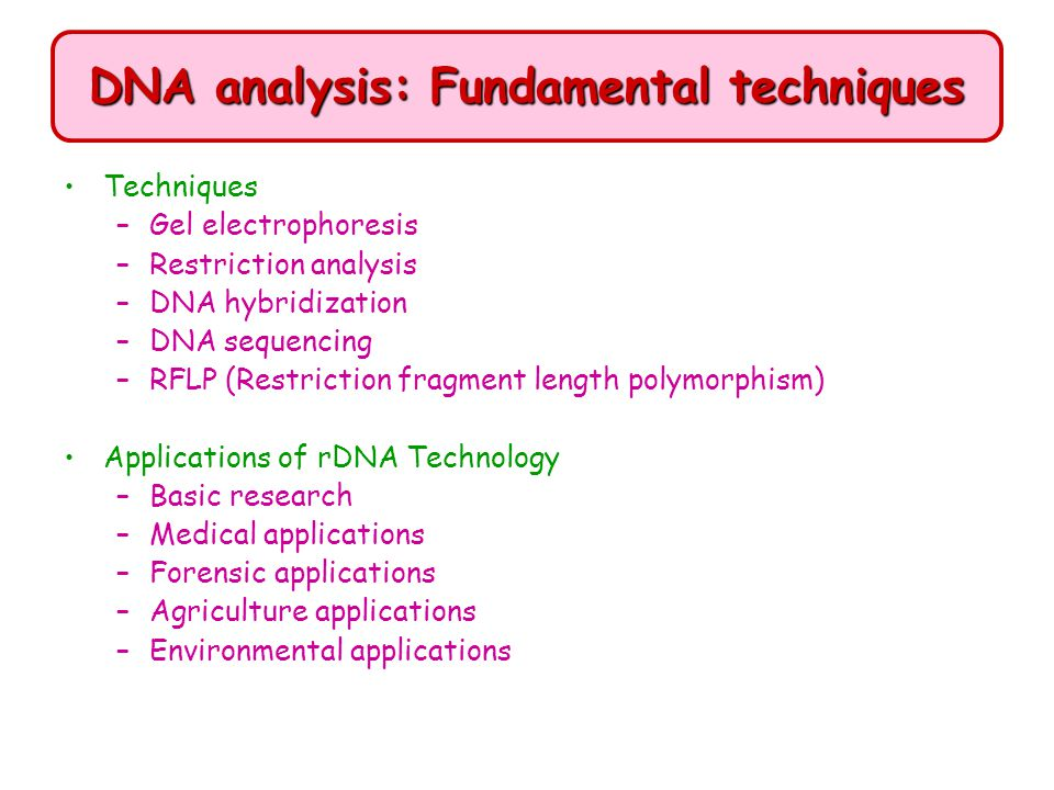 DNA analysis: Fundamental techniques