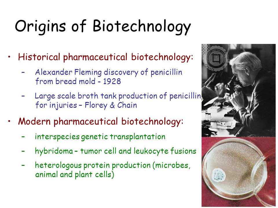 Origins of Biotechnology