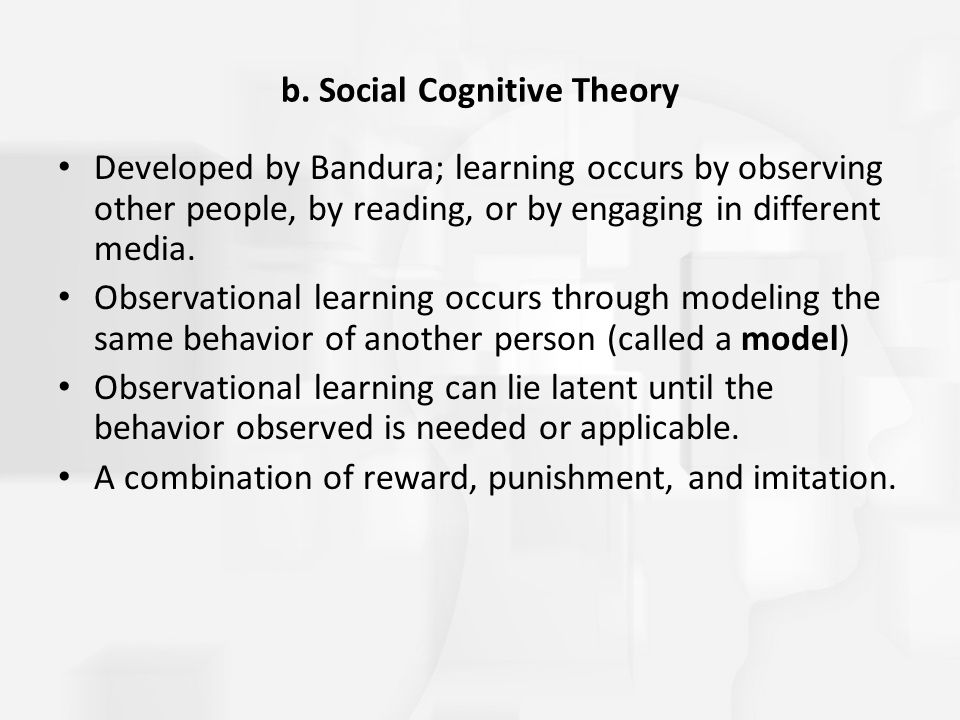 b. Social Cognitive Theory