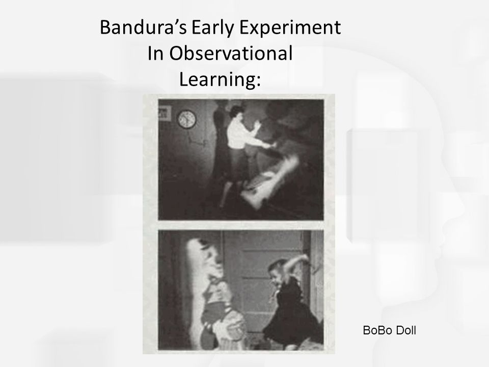 Bandura's Early Experiment In Observational Learning: