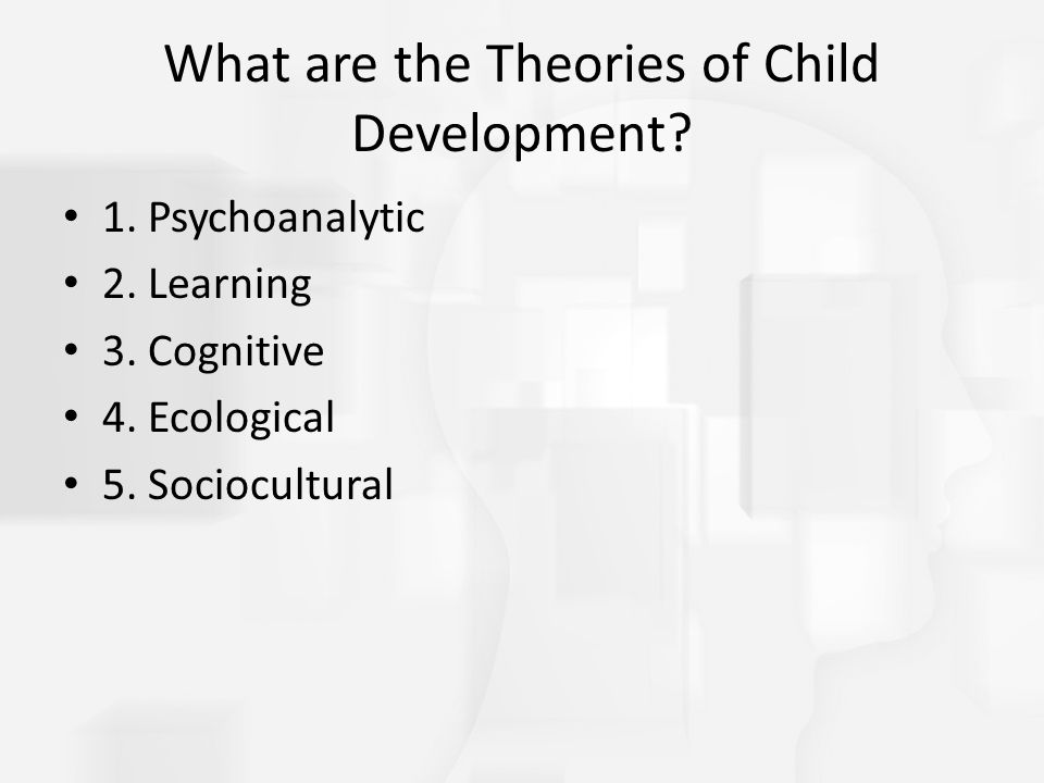 What are the Theories of Child Development