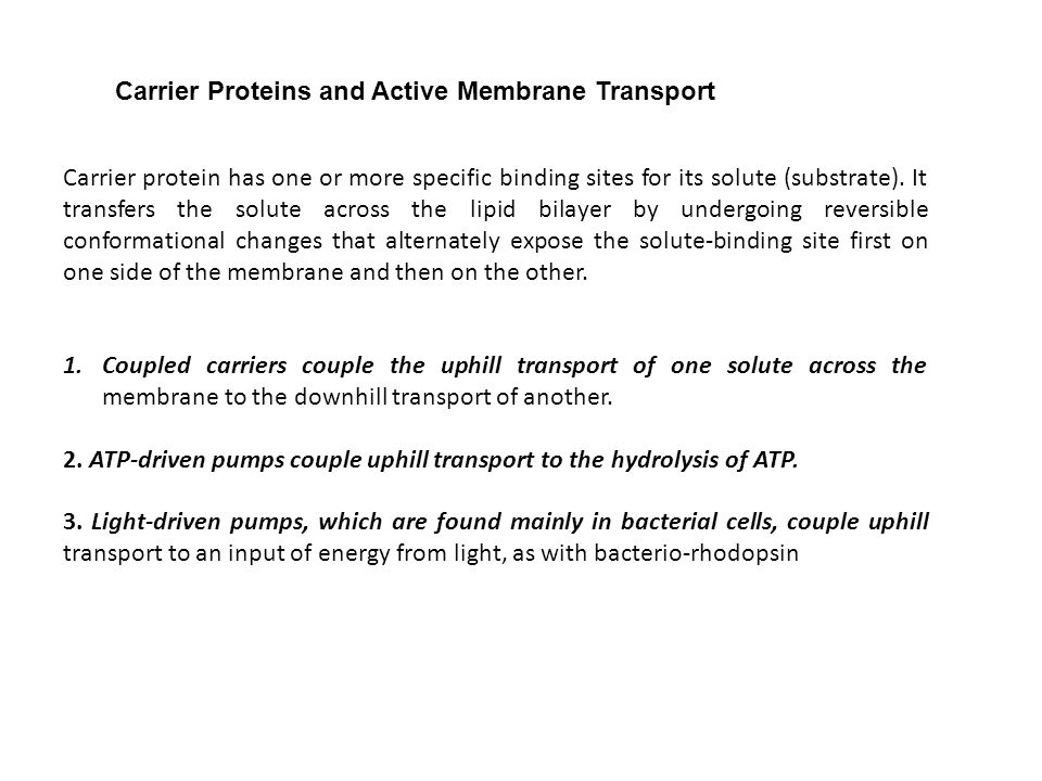 Carrier Proteins and Active Membrane Transport