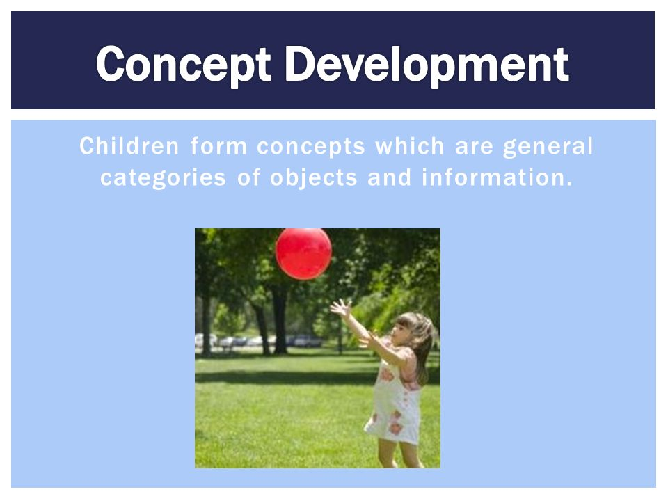 Concept Development Children form concepts which are general categories of objects and information.