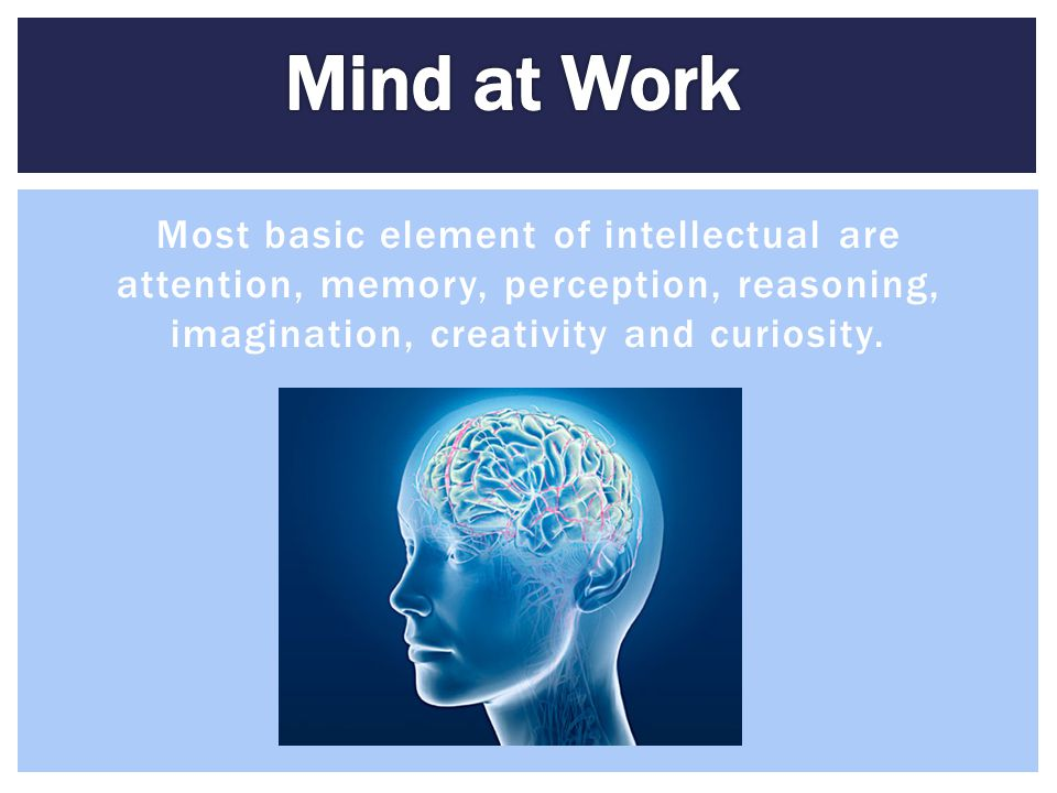 Mind at Work Most basic element of intellectual are attention, memory, perception, reasoning, imagination, creativity and curiosity.