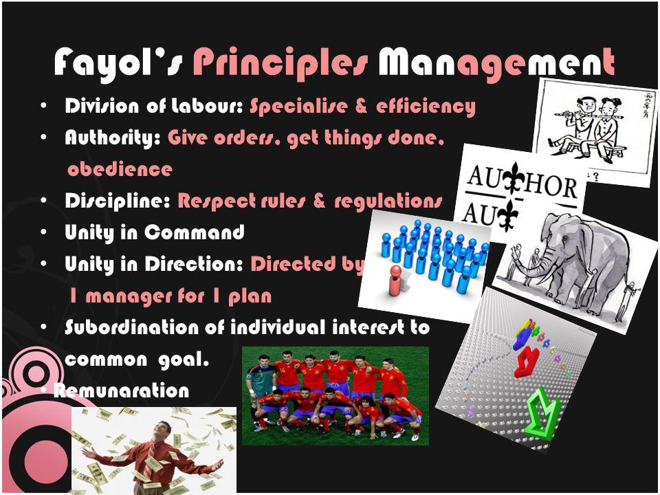 Fayol's Principles Management