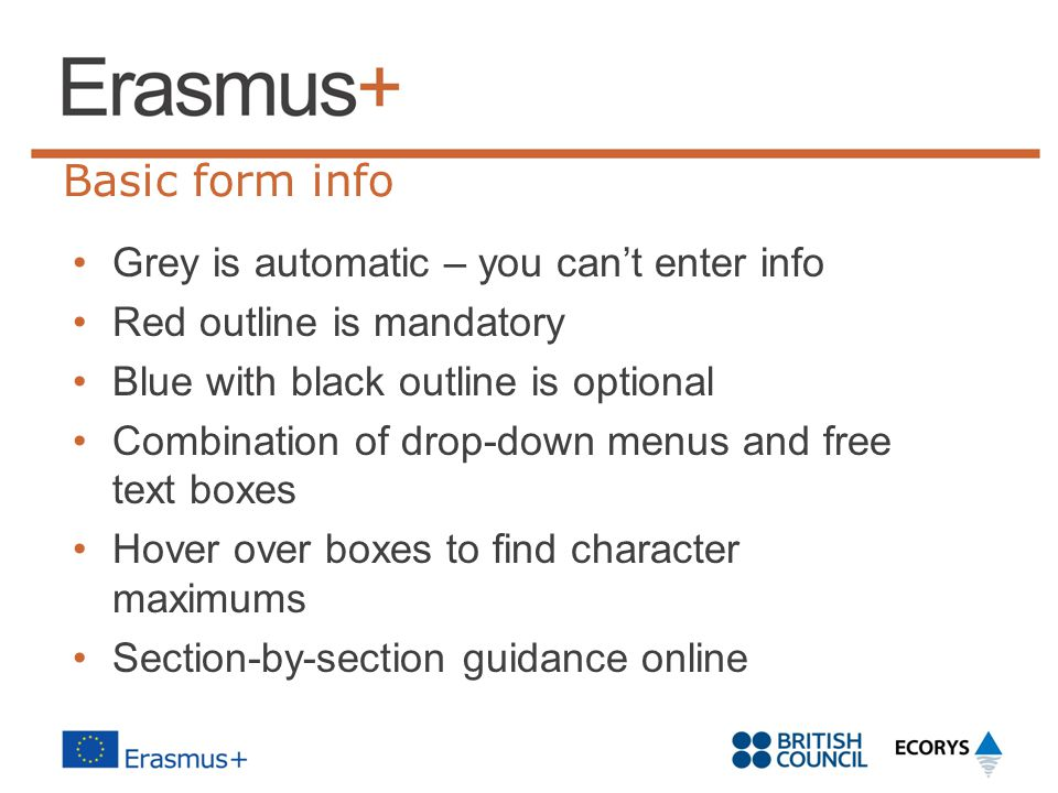 Basic form info Grey is automatic – you can't enter info