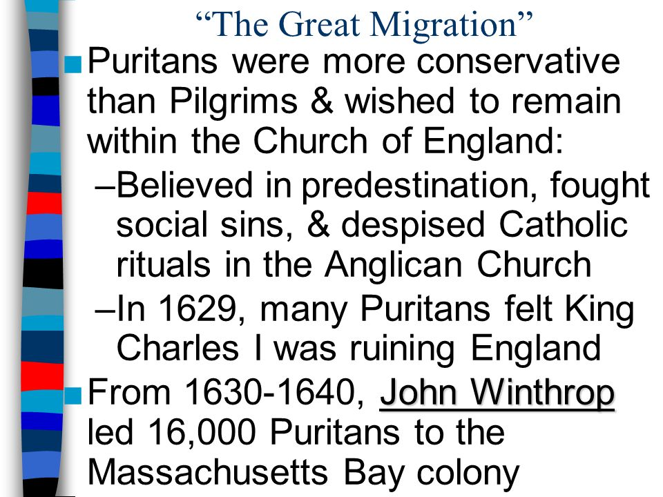 The Great Migration Puritans were more conservative than Pilgrims & wished to remain within the Church of England: