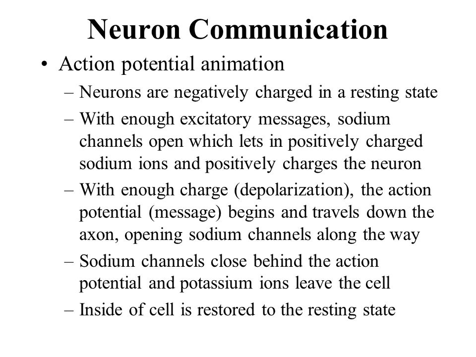 Neuron Communication Action potential animation