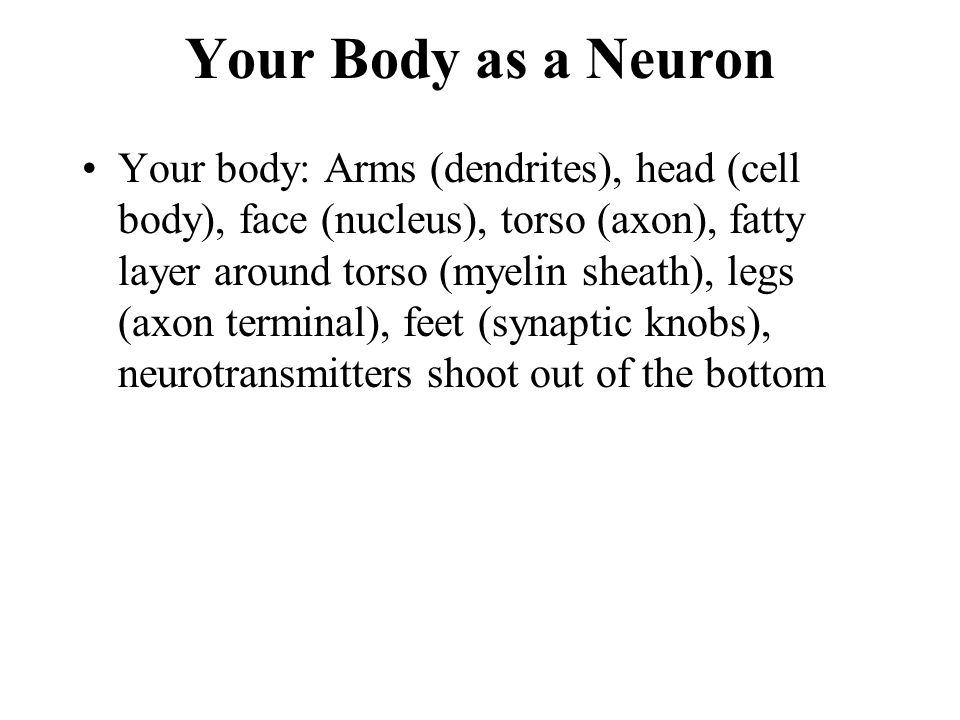 Your Body as a Neuron