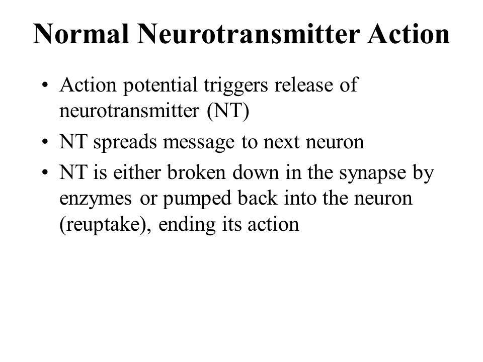 Normal Neurotransmitter Action