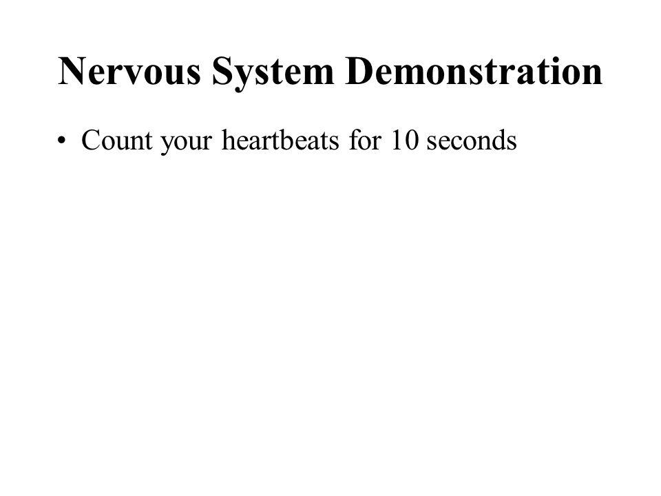 Nervous System Demonstration