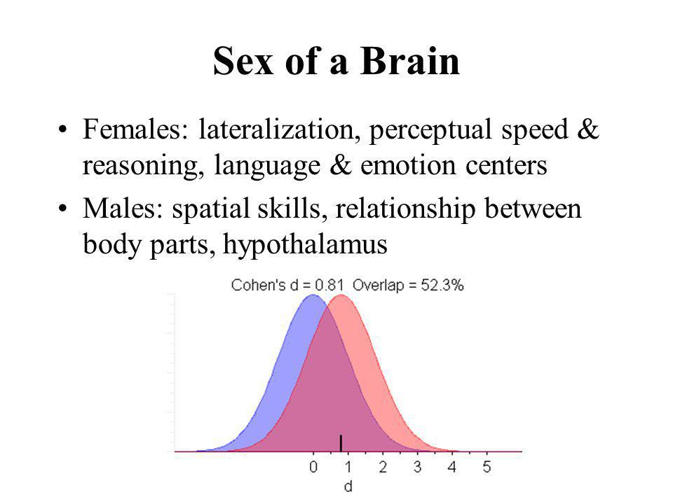Sex of a Brain Females: lateralization, perceptual speed & reasoning, language & emotion centers.
