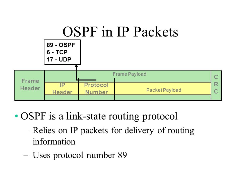 OSPF in IP Packets OSPF is a link-state routing protocol