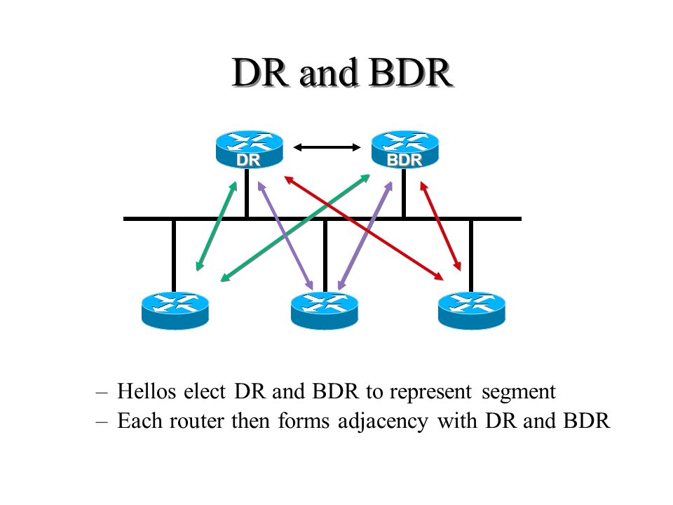 DR and BDR Hellos elect DR and BDR to represent segment
