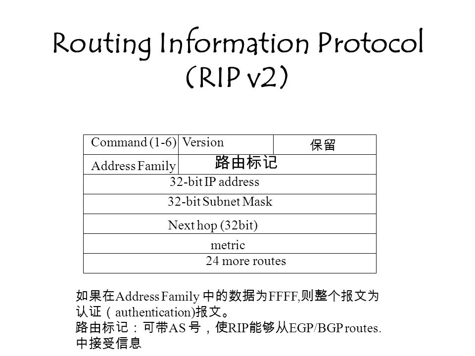 Routing Information Protocol (RIP v2)