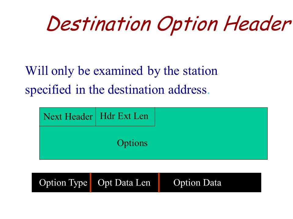 Destination Option Header
