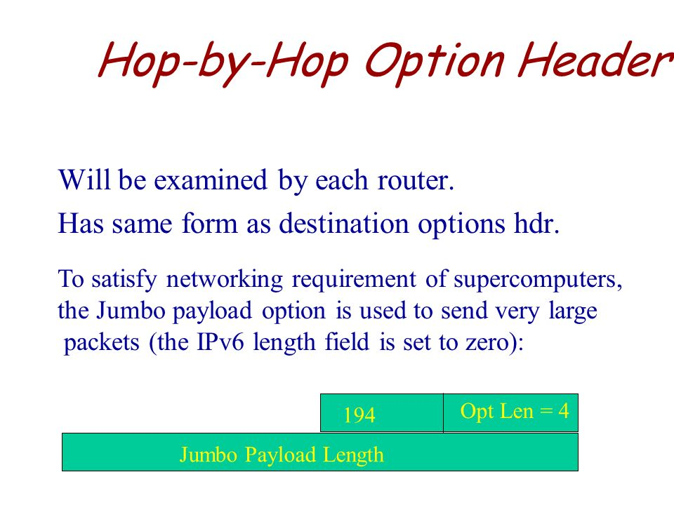 Hop-by-Hop Option Header
