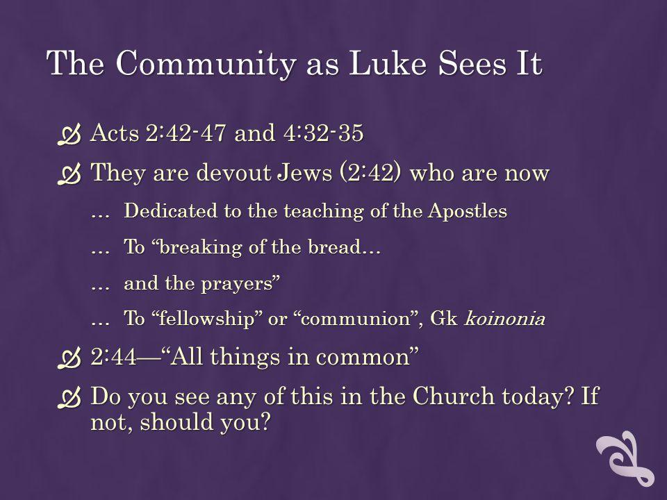 The Community as Luke Sees It