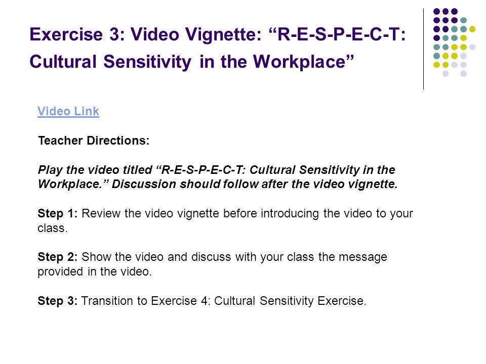 Exercise 3: Video Vignette: R-E-S-P-E-C-T: Cultural Sensitivity in the Workplace