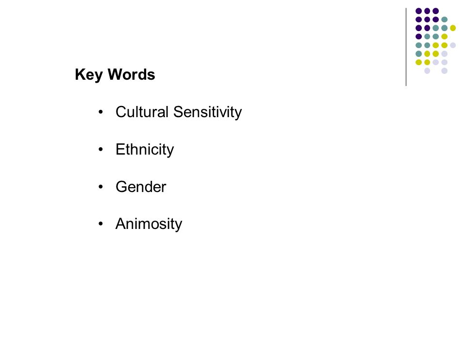 Key Words Cultural Sensitivity Ethnicity Gender Animosity