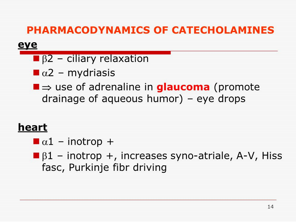 PHARMACODYNAMICS OF CATECHOLAMINES
