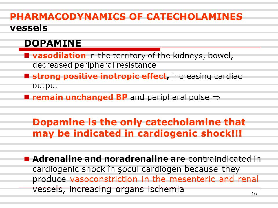 DOPAMINE PHARMACODYNAMICS OF CATECHOLAMINES vessels