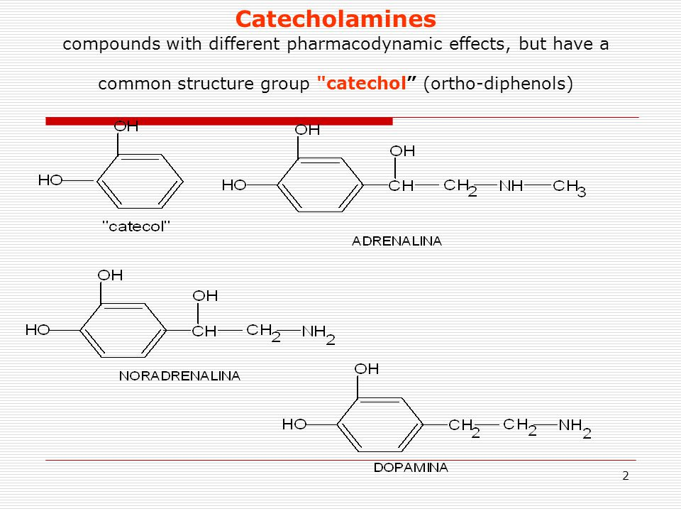 Catecholamines compounds with different pharmacodynamic effects, but have a common structure group catechol (ortho-diphenols)