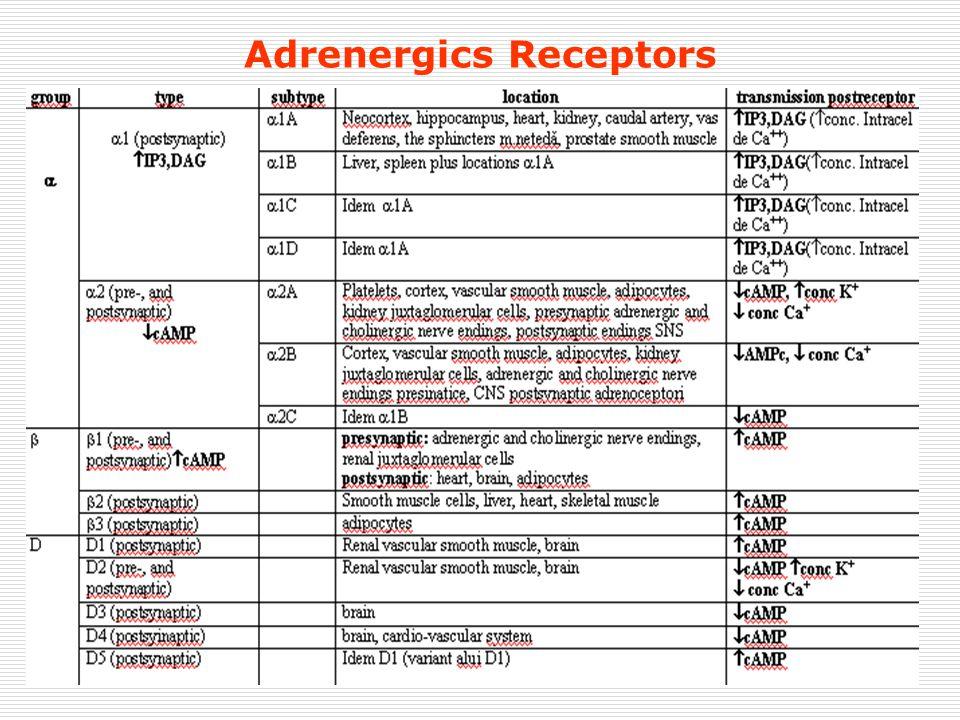 Adrenergics Receptors