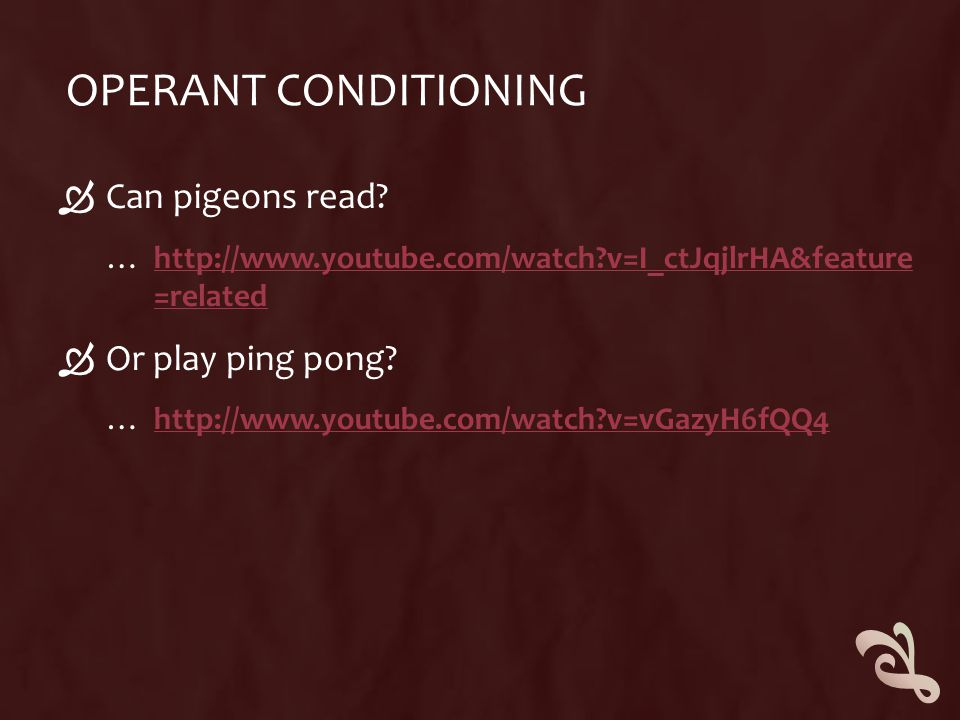 Operant Conditioning Can pigeons read Or play ping pong