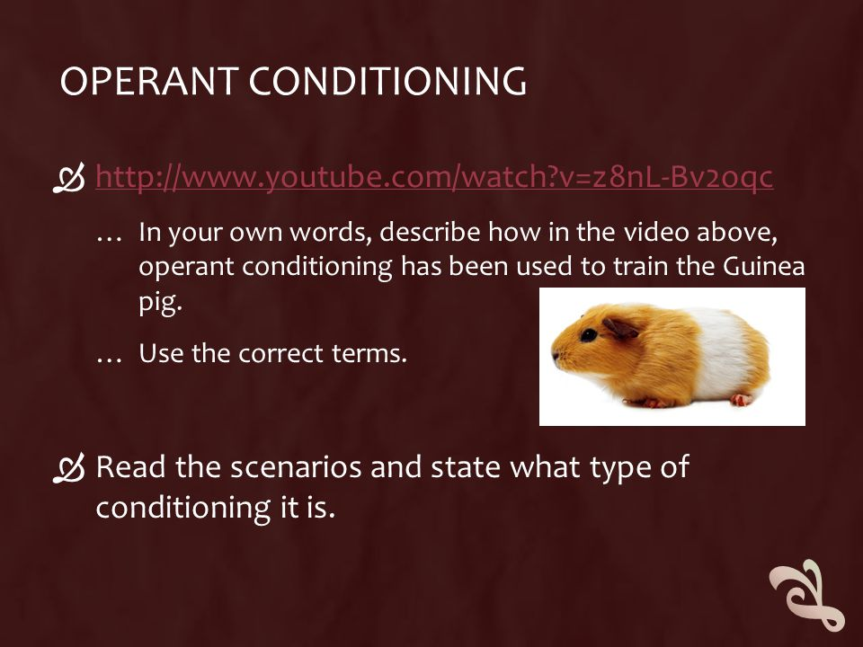 Operant Conditioning http://www.youtube.com/watch v=z8nL-Bv2oqc