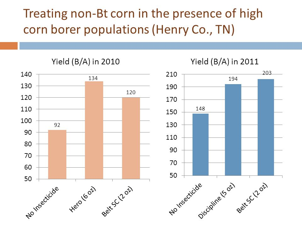Treating non-Bt corn in the presence of high corn borer populations (Henry Co., TN)