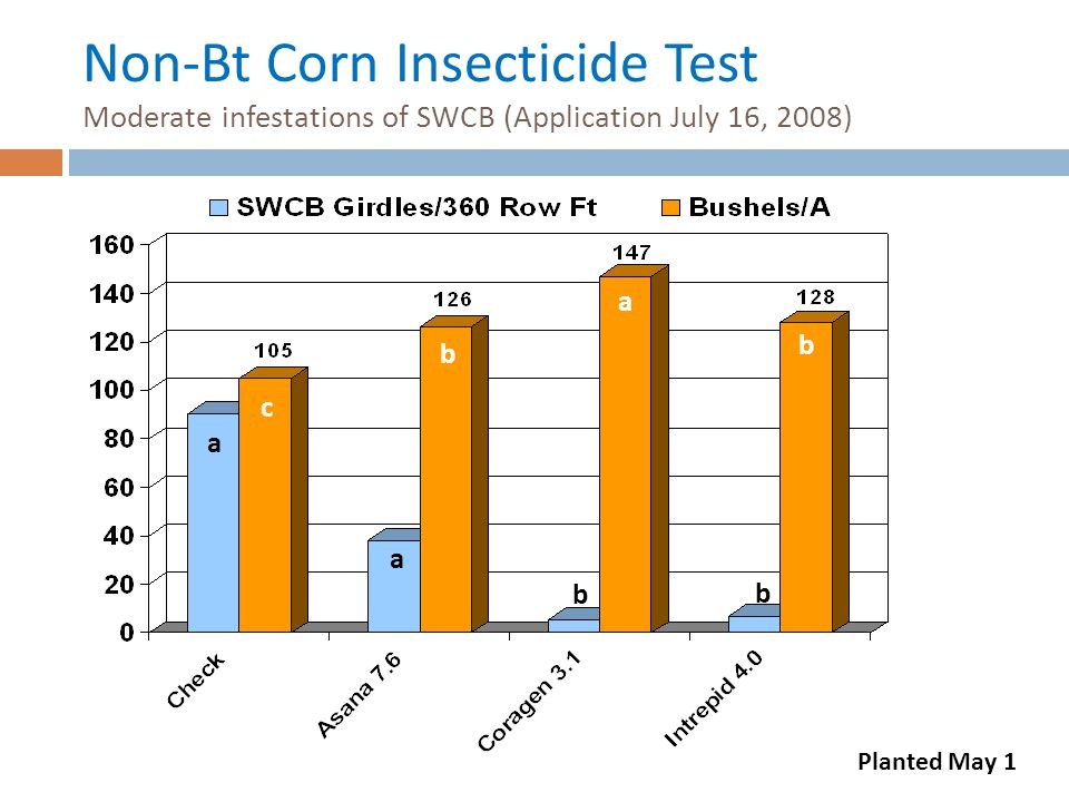 Non-Bt Corn Insecticide Test Moderate infestations of SWCB (Application July 16, 2008)
