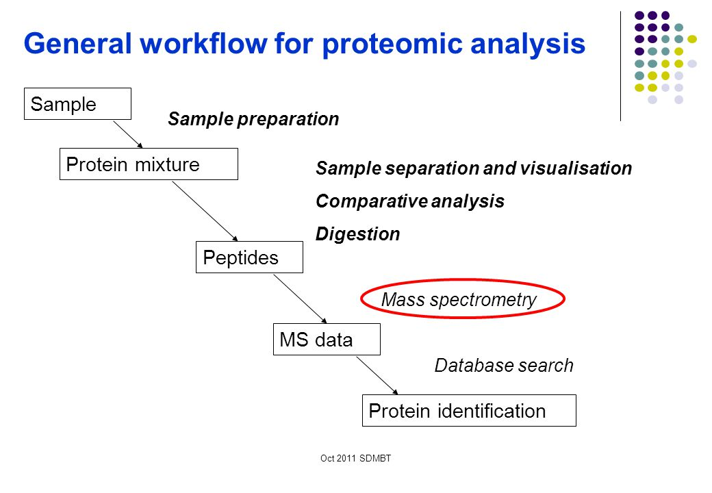 General workflow for proteomic analysis
