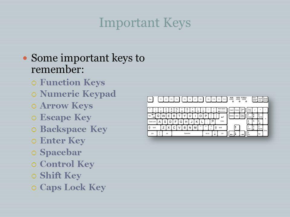 Important Keys Some important keys to remember: Function Keys