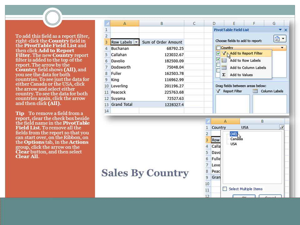 To add this field as a report filter, right-click the Country field in the PivotTable Field List and then click Add to Report Filter. The new Country report filter is added to the top of the report. The arrow by the Country field shows (All), and you see the data for both countries. To see just the data for either Canada or the USA, click the arrow and select either country. To see the data for both countries again, click the arrow and then click (All).