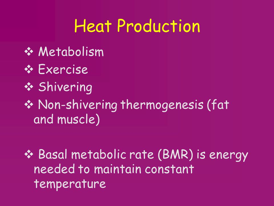 Heat Production Metabolism Exercise Shivering