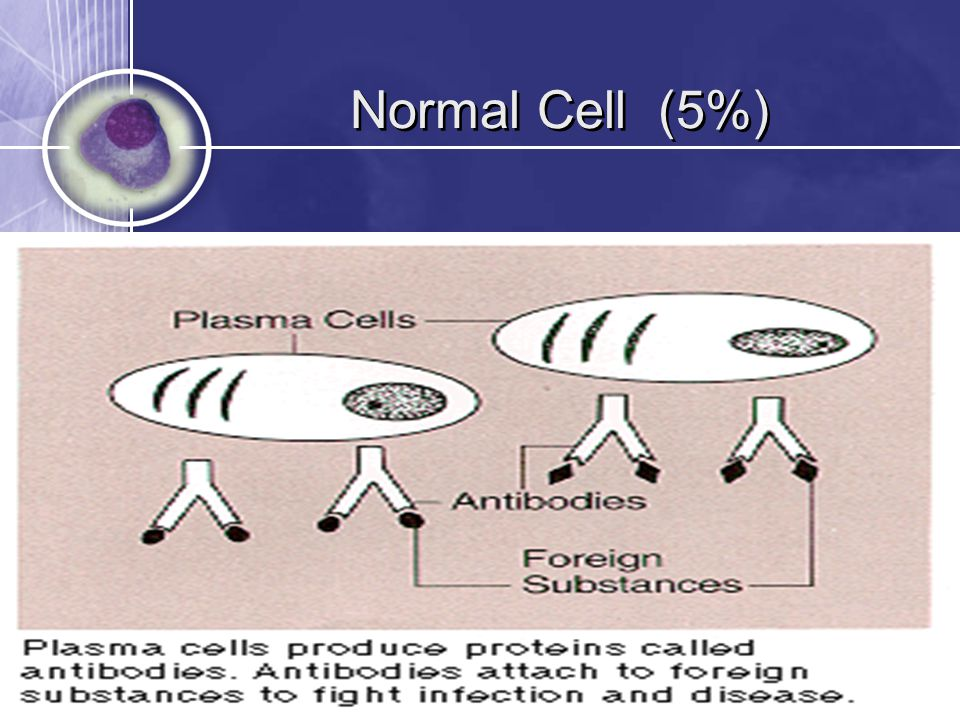 Normal Cell (5%)