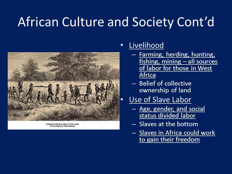African Culture and Society Cont'd