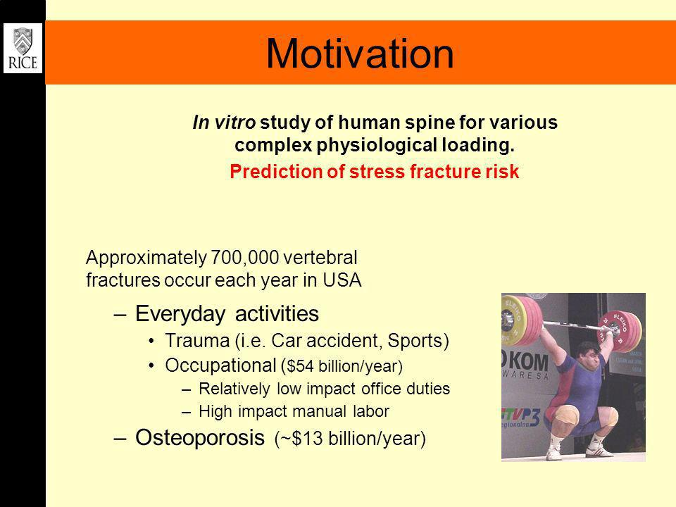 Prediction of stress fracture risk