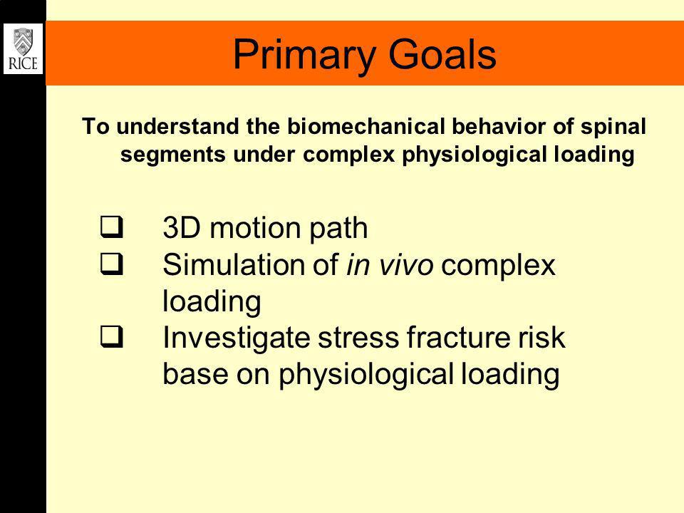 Primary Goals 3D motion path Simulation of in vivo complex loading