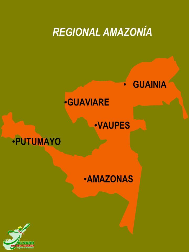 REGIONAL AMAZONÍA GUAINIA GUAVIARE VAUPES PUTUMAYO AMAZONAS