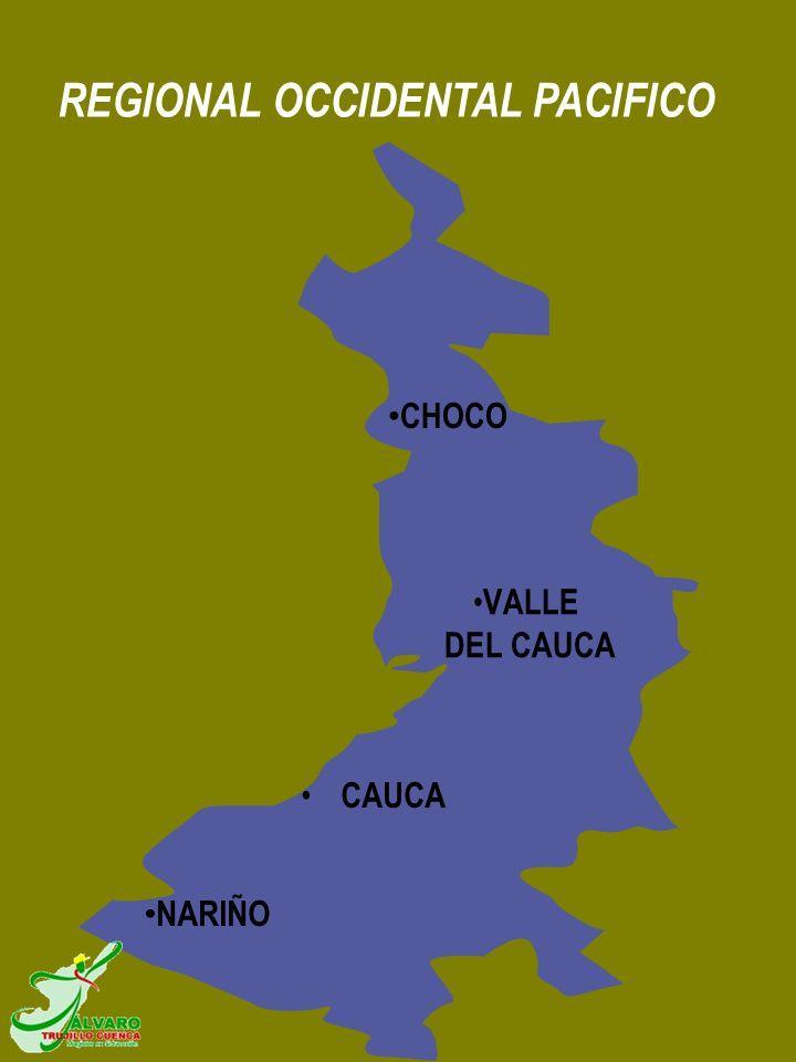 CHOCO VALLE DEL CAUCA NARIÑO