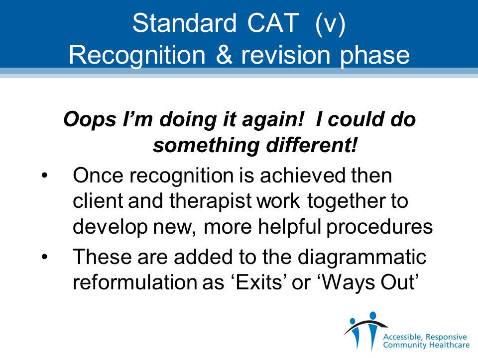 Standard CAT (v) Recognition & revision phase