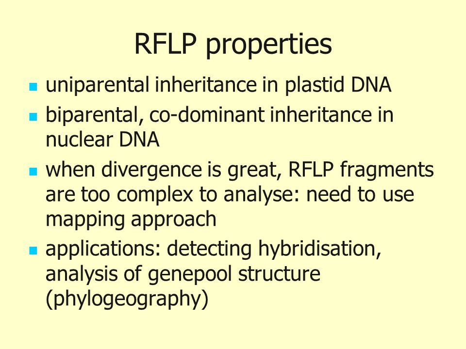 RFLP properties uniparental inheritance in plastid DNA