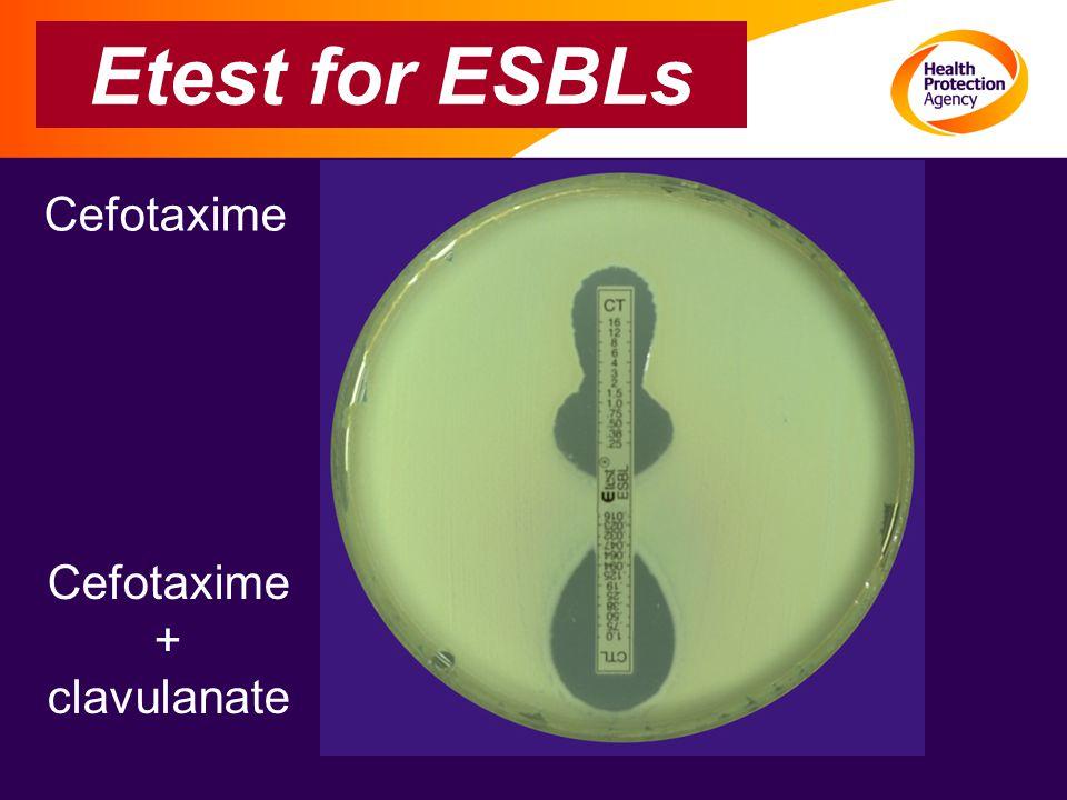 Etest for ESBLs Cefotaxime Cefotaxime + clavulanate