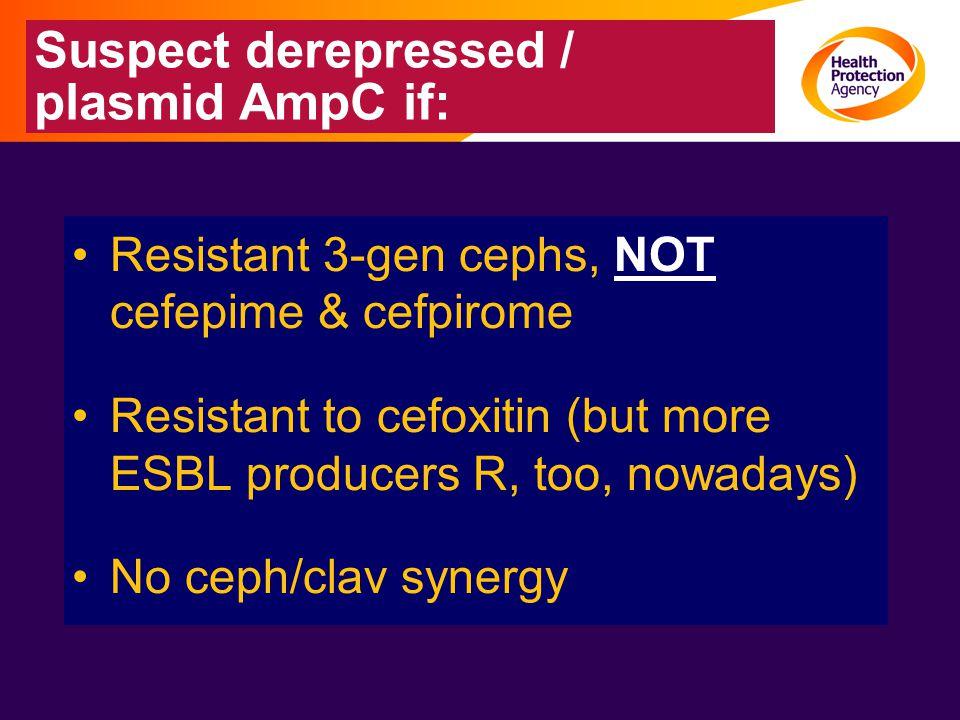 Suspect derepressed / plasmid AmpC if: