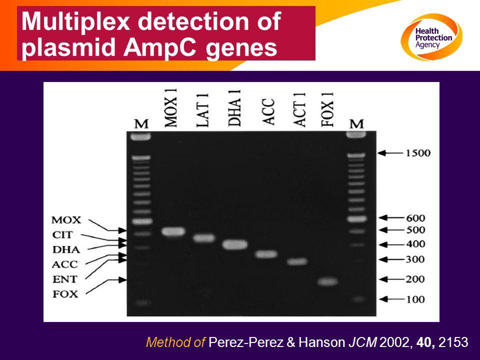 Multiplex detection of plasmid AmpC genes