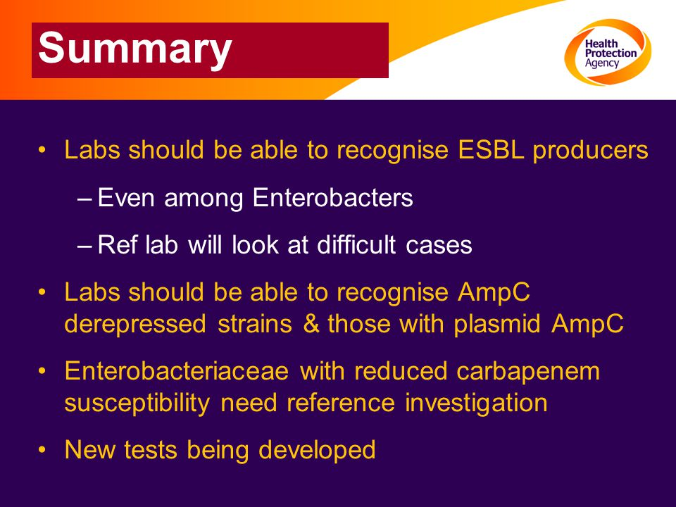 Summary Labs should be able to recognise ESBL producers