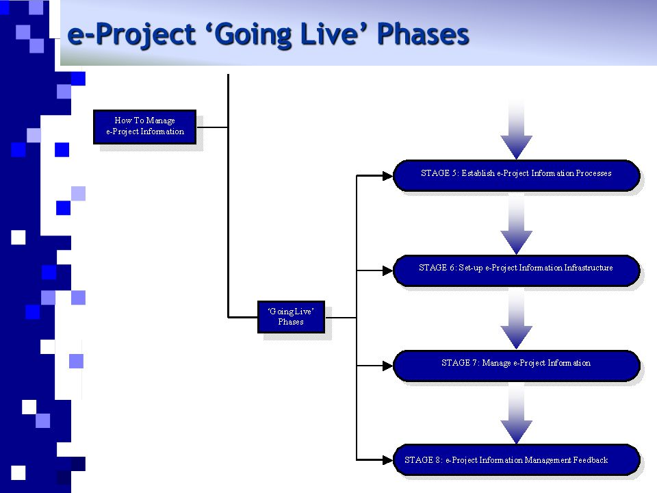 e-Project 'Going Live' Phases